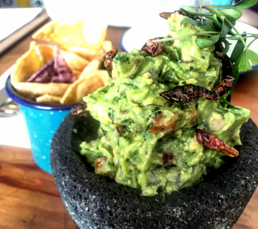 Santo Remedio guacamole with grasshoppers
