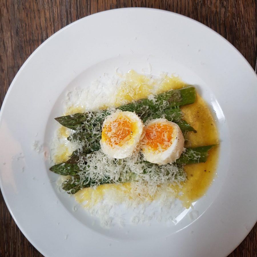 Beagle asparagus